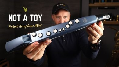 "Photo of Roland Aerophone Mini ""Not A Toy!"""
