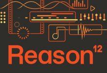 Reason Studios Updates
